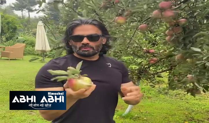 मनाली में इस बॉलीवुड स्टार ने बगीचे से तोड़ लिया है सेब