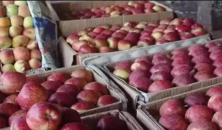 हिमाचल: 43 लाख के सेब पर यूपी के व्यापारी ने डाला डाका, लेकर हुआ फरार