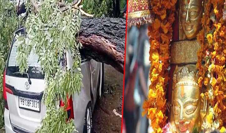 नयना देवी से लौट रहे थे श्रद्धालु कार पर अचानक आ गिरा पेड़, बोले- मां ने बचाया
