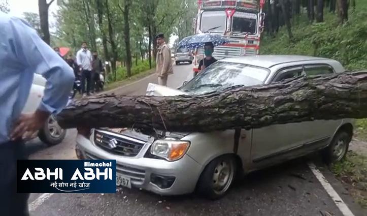 हिमाचल में बारिश का कहरः मंडी-पठानकोट एनएच पर घट्टा के पास चलती कार पर गिरा पेड़