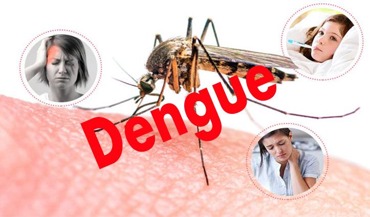 हिमाचल में कोरोना के साथ डेंगू के बढ़ने लगे मामले, जाने-क्या कहता है स्वास्थ्य विभाग