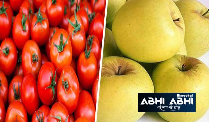 महंगाई की मार: राजधानी शिमला में सेब से महंगा हुआ टमाटर