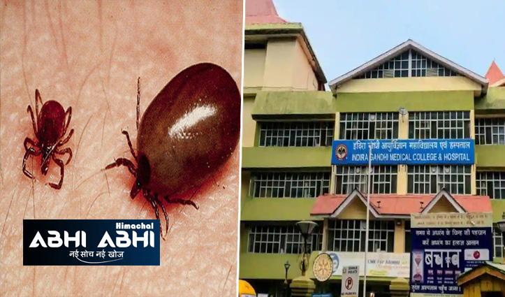 हिमाचलः आईजीएमसी में स्क्रब टाइफस ने ली बिलासपुर के शख्स की जान
